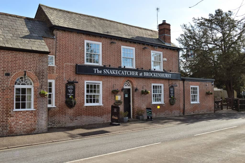 the Snake Catcher in brockenhurst